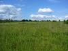 Продаю земельный участок у Зеленограда