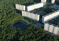 Березовый Дунькин пруд